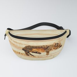 The sun shines on all cats equally Fanny Pack