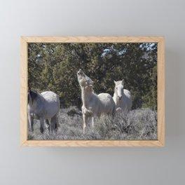 Happy Traveler with Mom and Pallaton Framed Mini Art Print