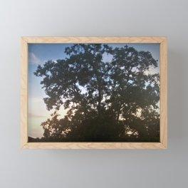 Tree of Wandering Bird Framed Mini Art Print