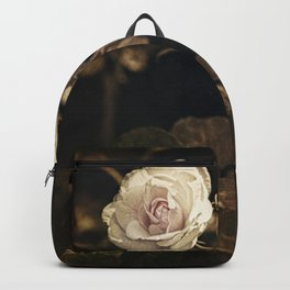Two pale roses in the garden. Backpack
