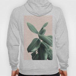 Ficus Elastica #25 #SummerVibes #foliage #decor #art #society6 Hoody