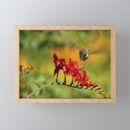 Hummingbird Materializing Framed Mini Art Print