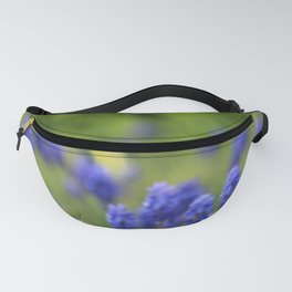 Grape Hyacinth in Spring Fanny Pack