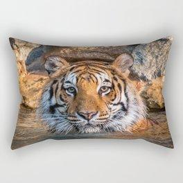 Sheba in the Pool Rectangular Pillow