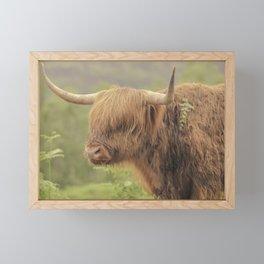 'Hamish' The Highland Cow Framed Mini Art Print