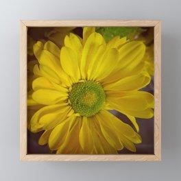 Sunny Yellow Flower Framed Mini Art Print