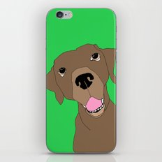 Dudley iPhone & iPod Skin