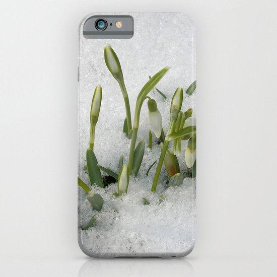 snowdrop II iPhone & iPod Case