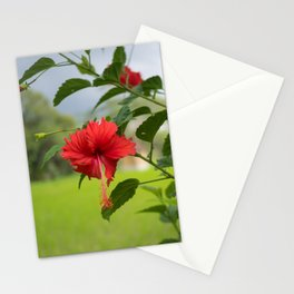 Tropical red orchid flower in Ubud,  Bali | Travel Photography Art Prints Stationery Cards