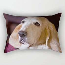 REGAL Rectangular Pillow