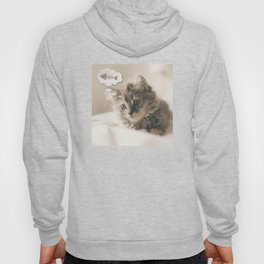 Dreaming Cat Hoody