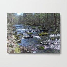 Arkansas creek Metal Print