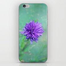 Fantasy Garden - Lilac Beauty iPhone & iPod Skin