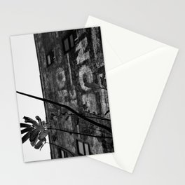 Renewal Stationery Cards
