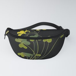 Oxalis Pes Capri Mary Delany Delicate Paper Flower Collage Black Background Floral Botanical Fanny Pack