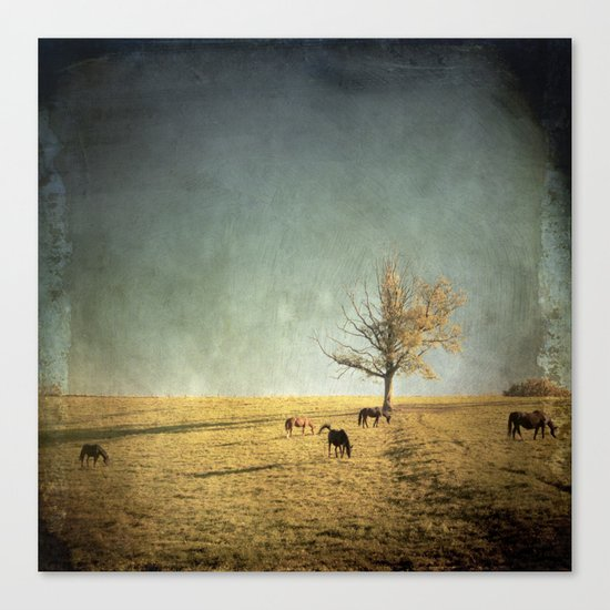 5 horses & a tree Canvas Print