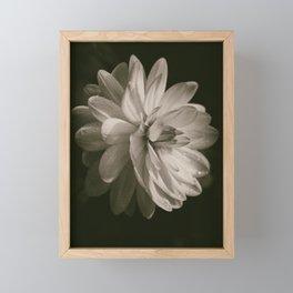 Vintage Velvet Framed Mini Art Print