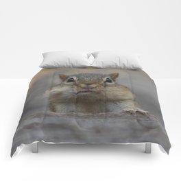 CHIPMUNK CHEEKS Comforters