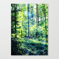 one summer day in the forest Canvas Print