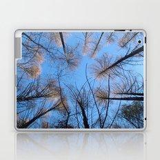 Glowing trees II Laptop & iPad Skin