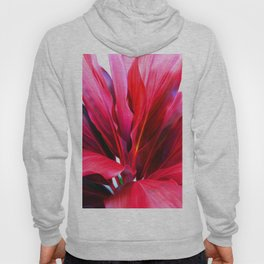 Red Ti Leaf Hoody