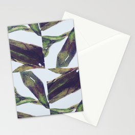 The Olive Branch Show Stationery Cards