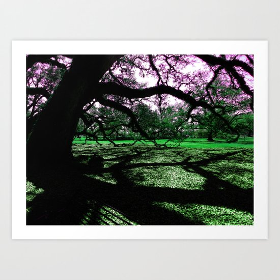 Green Oak Shadows Art Print