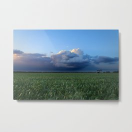 Wheat in Kansas - May Metal Print
