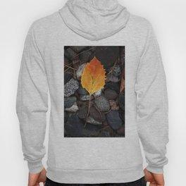 Fallen Leaf Hoody