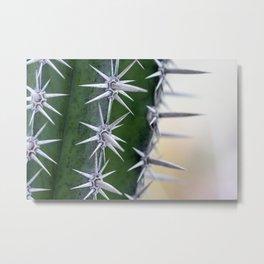 Long Sharp Thorns / Cactus Macro Photo Metal Print