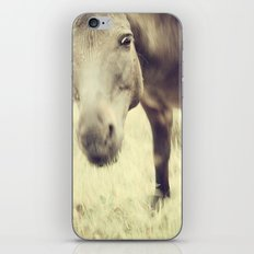 Munching Out iPhone & iPod Skin