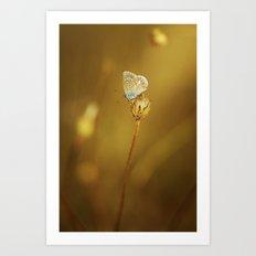 Azurée doré Art Print
