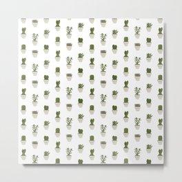 Cacti & Succulents - White Metal Print