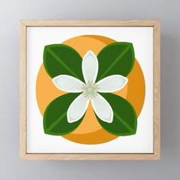 Orange Blossom Framed Mini Art Print