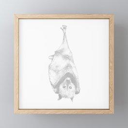 Flying fox Framed Mini Art Print