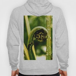 Fiddlehead Fern photo Hoody