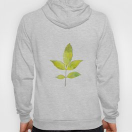 leaves painted with watercolor . designer paintings for eco-style . eco style interior . Sustainable Hoody