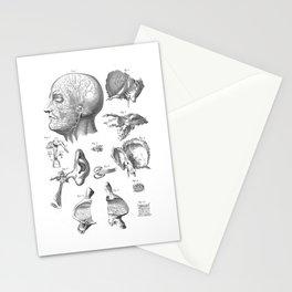 Anatomie Stationery Cards