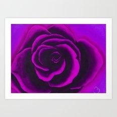 Violet Rose Art Print