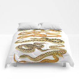 Snakes Comforters