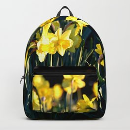 DAFFODILS IN THE LATE SPRING AFTERNOON LIGHT Backpack