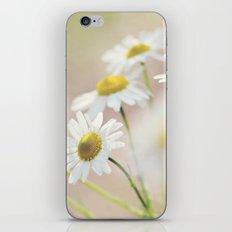 dreamy daisies iPhone & iPod Skin