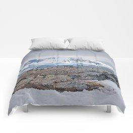 Gentoo Penguins Comforters