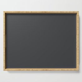 Dunn & Edwards 2019 Curated Colors Dark Engine (Dark Gray / Charcoal Gray) DE6350 Solid Color Serving Tray