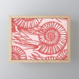 AMMONITE COLLECTION RED Framed Mini Art Print
