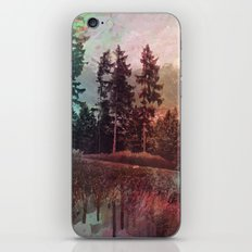 forest3 iPhone & iPod Skin