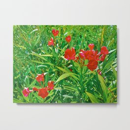 Flowers and Green Plants at Outdoor Garden Metal Print