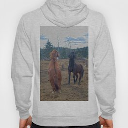 The Challenge - Ranch Horses Fighting Hoody