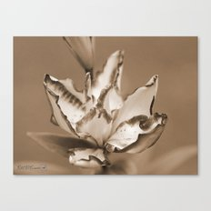 Double Asiatic Lily named Double Pleasure Canvas Print