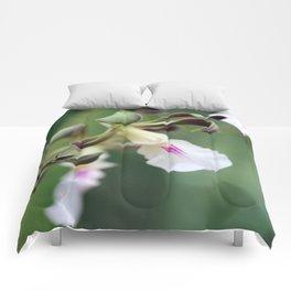 Monkey Orchide Comforters